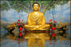 buddha-1024x683